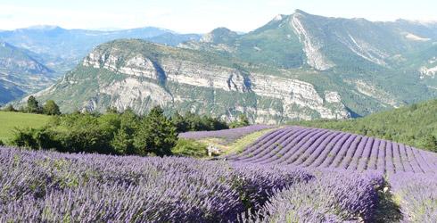 Provence-Alpes-C�te d�Azur