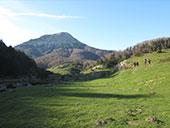 Forêt de Gamueta depuis le refuge de Linza