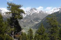 Vallée d´Incles et Alt de Juclar.