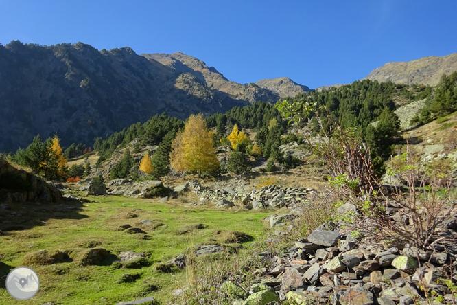 Chemin de Percanela - Les Fonts - Pla de l