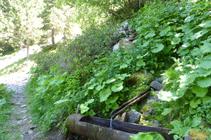 Croisement de la source du Cuc.
