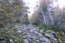 Petite zone rocailleuse près de Boïgot.