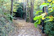 Chemin de Les Molleres.