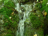 Les sources de Peramola (��Cam� de les Fonts��)