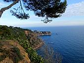 L�Ardenya depuis Sant Feliu de Gu�xols