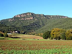 Pour les anciens chemins de Sant Juli� del Mont
