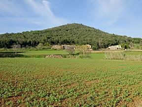 Le volcan du Puig d�Adri