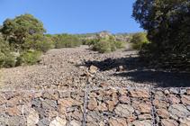 Rocailles schisteuses du Solà d´Andorre.