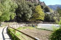 Potagers et serres dans le Rec del Solà.
