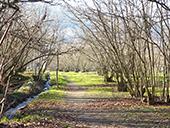 Randonnée Voramea et la Via Verda en Amer