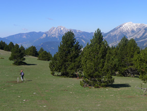 Route du Trencapinyes et le belv�d�re des Orris