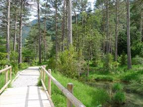 Itin�raire adapt� du Cornato dans la vall�e de Pineta