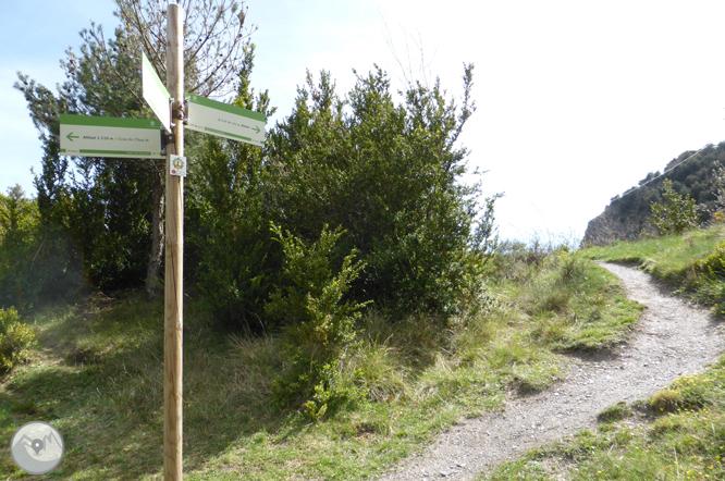 Tomb Lauredià Llarg de Sant Julià de Lòria 1