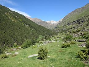 Vall�e de Riq�erna et chemin de Rus depuis Capdella
