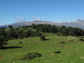 Itin�raire par la Serra de Freixa depuis Llagunes